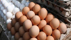 Как проверить свежесть куриных яиц — какой срок годности у яиц